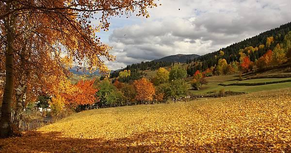 Sonbahar Şavşat'ta Yaşanır