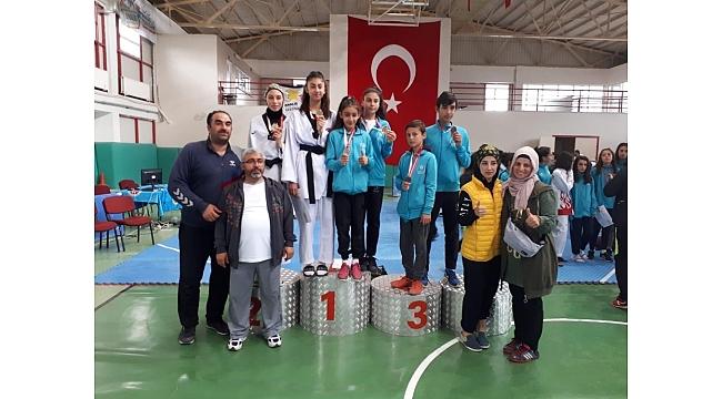 Analig Taekwondo'da Kayseri Farkı