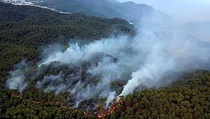 25 Hektarlık Alanda Etkili Yangını Söndürme Çalışmaları Sürüyor