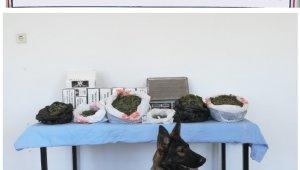 Ayvalık'ta jandarma 5.600 gram uyuşturucu ele geçirdi