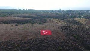 Datça'nın geleceğine nefes için 11 bin fidanı toprakla buluşturdu