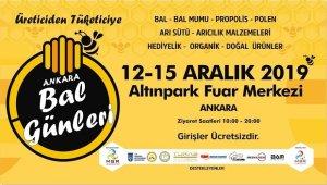 Ankara'nın 'en ballı' günleri başlıyor