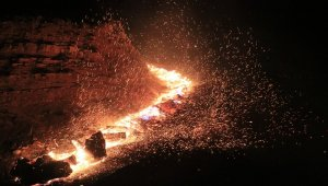 Adana'da orman yangını kontrol altına alındı