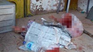 Derisi yüzülmüş karaca bulundu, 25 bin lira ceza kesildi