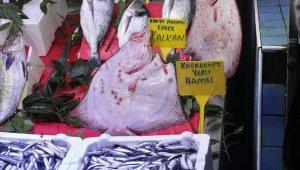 Kalkan balığının fiyatı dudak uçuklatıyor