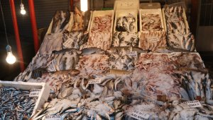 Balıkçılar çiftlik balıklarının fiyatlarının artmasına tepkili