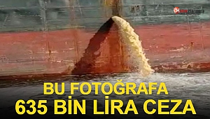 Bu Fotoğrafa 635 Bin TL Ceza