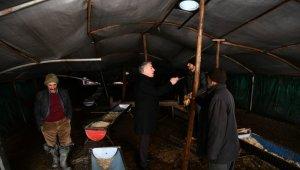 İl Tarım ve Orman Müdürü Şahin kar yağışında çöken ağıllarda incelemelerde bulundu