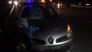 TEM'de otomobilin çarptığı yaşlı adam öldü