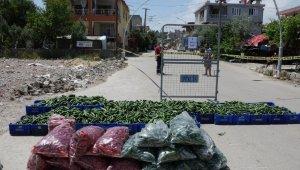 Antalya'da 15 sokağı içine alan karantina bölgesinde kuş uçurtulmuyor