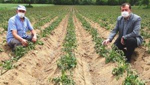 """Başkan Yusuf Çalışkan: """"Çiftçilere Don Zararı Desteği ödemesi yapılsın"""""""