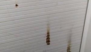 Camideki muslukları çalıp ibrikleri ateşe verdiler