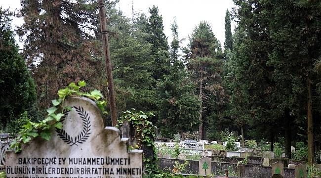 Her yıl ziyaretçi akınına uğrayan mezarlıklar bu yıl boş kaldı