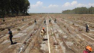 Mersin'de yangın ekipleri iş başı eğitimlerine başladı
