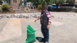 Sokağa çıkma yasağında sokak hayvanlarının beslenmesini üstlendiler
