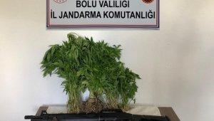 Bolu'da uyuşturucu operasyonunda 2 gözaltı