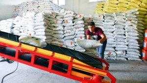 Çiftçiye Macar fiğ tohumu desteği için ön kayıt başvuruları başladı