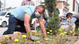 Erciş Belediyesi caddeleri çiçeklerle donatıyor