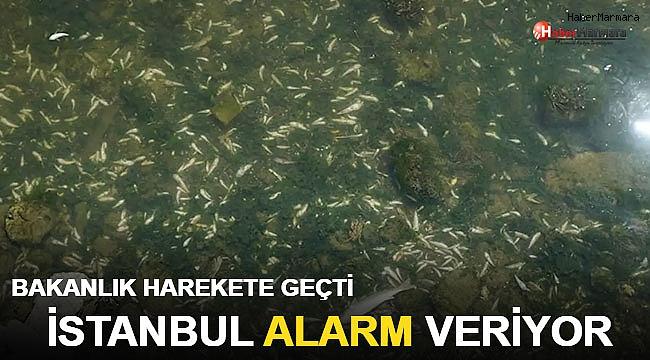 İstanbul Alarm Veriyor Bakanlık Harekete Geçti