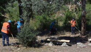 Nazilli'deki yeşil alanlarda çalışmalar sürüyor