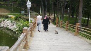 Parklar ve ormanlar yeniden ziyarete açıldı