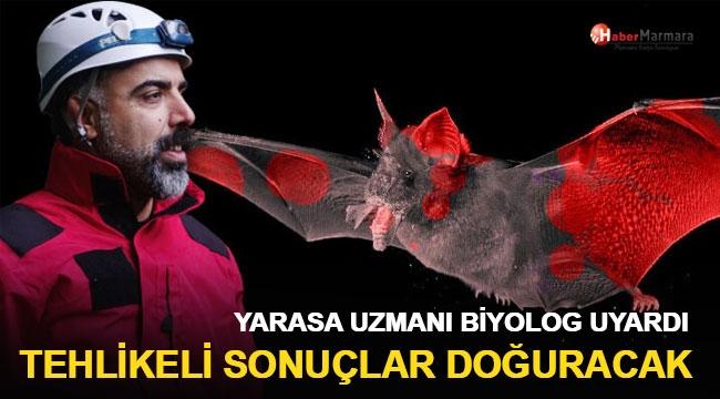Türk yarasa uzmanı uyardı! Tehlikeli sonuçlar doğuracak
