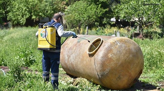 Tuzla'da zararlı haşerelere karşı ilaçlama devam ediyor