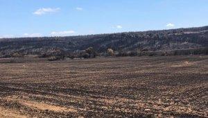 Başkan Akgün Gelibolu'da yangın bölgesinde incelemelerde bulundu