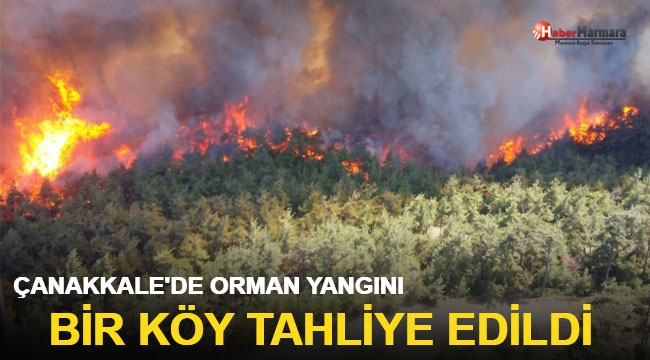 Çanakkale'de orman yangını! Çok sayıda ekip bölgeye sevk edildi