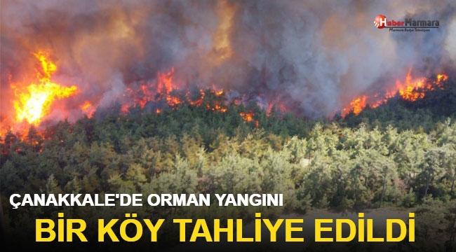 Çanakkale'de orman yangını! Çok sayıda ekip bölgeye sevk edildi