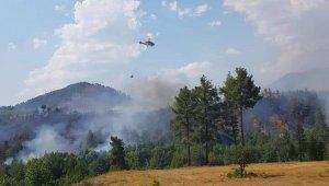 Denizli'de orman yangını 3 helikopterle kontrol altına alındı