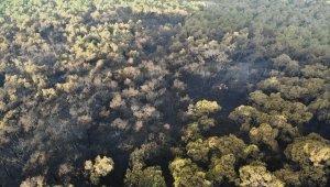 Heybeliada'da yanan ormanlık alan havadan görüntülendi