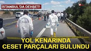 İstanbul'da dehşet! Yol kenarında ceset parçaları bulundu