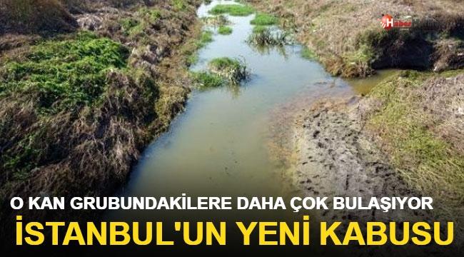 İstanbul'un yeni kabusu! 0 kan grubundakileri daha çok etkiliyor