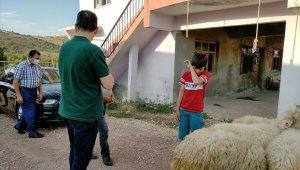 Kazada kuzusu ölen Barış'a kuzu hediyesi