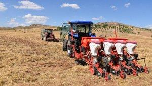 Kırıkkale'de yağlık ayçiçeği ekimi yapıldı