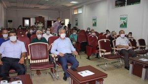 Mersin'de yeni bir muz çeşidi geliştirildi: Alata Azmanı