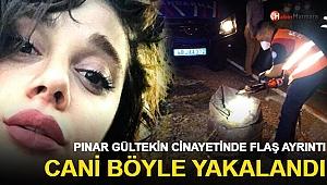 Pınar Gültekin cinayetinde son dakika gelişmesi: Cani böyle yakalandı