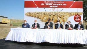 """""""Köyde yaşamak için 'bir sürü' neden projesi"""" protokolü koyun sürülerinin arasında imzalandı"""