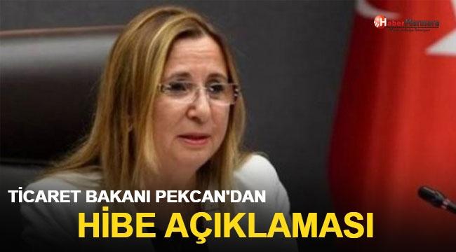 Ticaret Bakanı Pekcan'dan hibe açıklaması!
