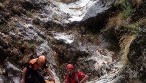 Adaçayı toplamak için gittiği dağlık alandan düşen kadın hayatını kaybetti