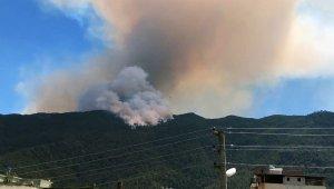 Aydın'daki yangın büyüyor
