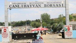 Diyarbakır'da kurbanlık fiyatları bayramın 3'üncü gününde düştü