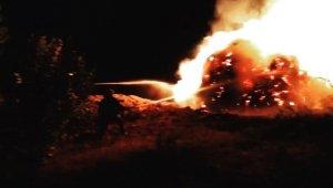 Gevaş'ta 2 bin 700 bağ ot yandı