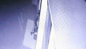İş yerlerine dadanan hırsız önce kameraya sonra polise yakalandı