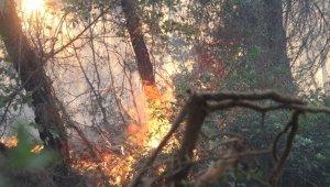 İzmir Menderes'teki yangın kontrol altında