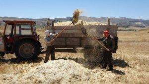 Kavurucu sıcakta çiftçilerin zorlu mesaisi
