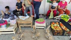 Sason'da organik köy ürünleri pazardaki yerini aldı
