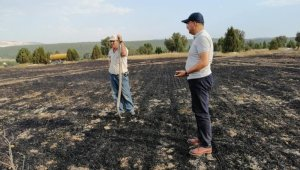 Tavşanlı'daki yangında 10 hektarlık alan zarar gördü