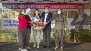 Başkan Seçer, nergis soğanı dağıtımına Darısekisi'nden başladı
